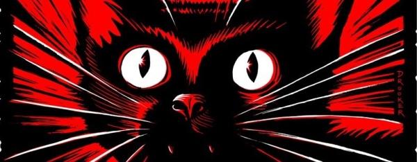 'Wildcat'