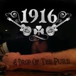 1916 (2012)